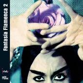 FantasÍa Flamenca 2 by Chano Domínguez