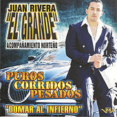 Play & Download Puros Corridos Pesados by Juan Rivera | Napster