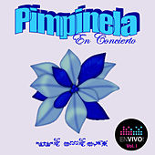 En Concierto, Vol. 1 (En Vivo) by Pimpinela