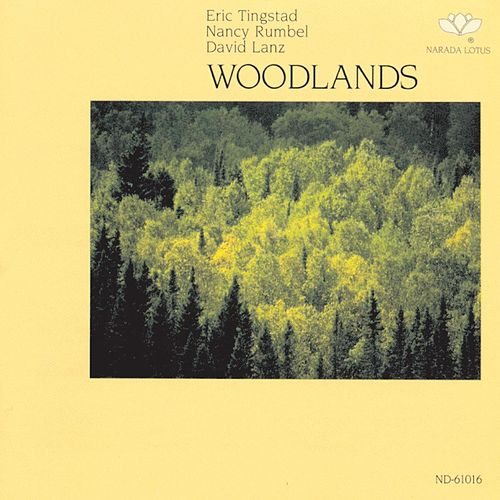 Play & Download Woodlands by Eric Tingstad | Napster