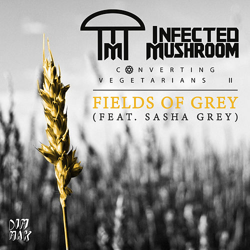 Play & Download Fields of Grey (feat. Sasha Grey) by Infected Mushroom | Napster
