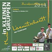 Play & Download Livemittschnitt der Finalrunde - Musik in kleinen Gruppen Bundeswettbewerb 2014 by Various Artists | Napster