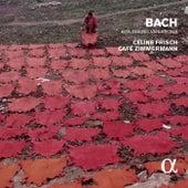 J.S. Bach: Goldberg Variations, BWV 988 & 14 Canons, BWV 1087