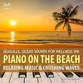 Play & Download Piano on the Beach - Relaxing Music & Chrushing Waves - Seagulls, Ocean Sounds for Wellness Spa by Torsten Abrolat | Napster