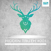 Hidden Truth #001 by Various Artists