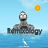 Play & Download Remixology by Gabriel Marchisio | Napster