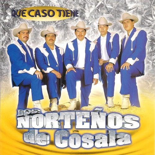 Que Caso Tiene by Los Norteños De Cosala