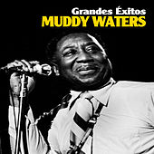 Play & Download Grandes Éxitos by Muddy Waters | Napster