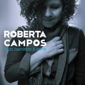 Play & Download Todo Caminho É Sorte by Roberta Campos | Napster