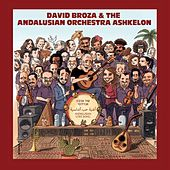 Andalusian Love Song by David Broza