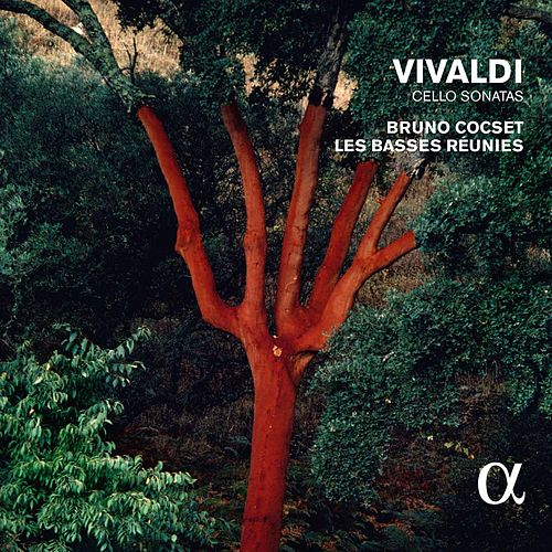 Play & Download Vivaldi: Cello Sonatas by Bruno Cocset | Napster