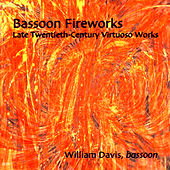 Bassoon Fireworks: Late Twentieth-Century Virtuoso Works - Sofia Gubaidulina, Lewis Neilsen, William Davis by Various Artists