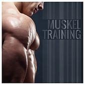 Play & Download Muskeltraining by Various Artists | Napster