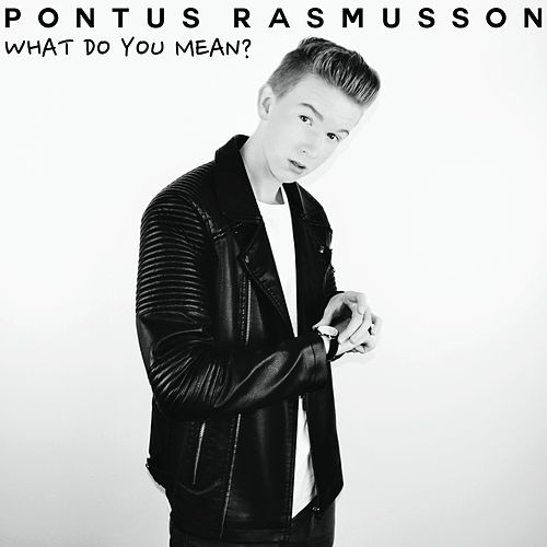 What Do You Mean? - Single von Pontus Rasmusson