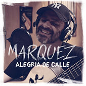 Play & Download Alegría de Calle (Álbum) by Márquez | Napster