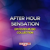 After Hour Sensation (Grooves Music Collection) by Various Artists