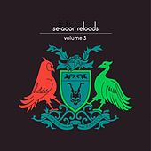 Selador Reloads, Vol. 3 by Various Artists