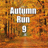 Autumn Run, Vol.9 von Various Artists