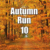 Autumn Run, Vol.10 von Various Artists