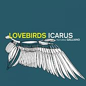 Play & Download Icarus by Lovebirds | Napster