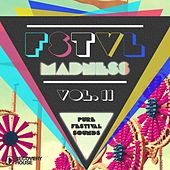 Play & Download FSTVL Madness, Vol. 11 - Pure Festival Sounds by Various Artists | Napster