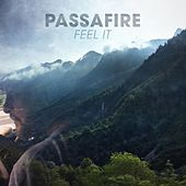 Feel It by Passafire