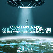 One Day On Earth Remixes by Various Artists