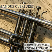 Famous Overtures, Brahms, Von Weber, Rossini & Strauss by Various Artists