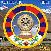 Authentic Tibet, Vol. 1 by APM Music