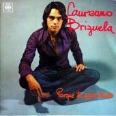 Porque Te Quiero Tanto by Laureano Brizuela