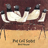 Bird House by Pat Coil