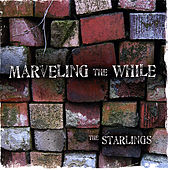 Play & Download Marveling the While by The Starlings | Napster