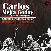 Play & Download Aromas De Libertad - Son Tus Perjúmenes Mujer by Carlos Mejia Godoy | Napster