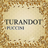 Turandot, Puccini by Various Artists