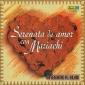 Serenata de Amor Con Mariachi by Mariachi Nueva Guadalajara
