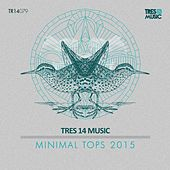 Minimal Tops 2015 by Various Artists
