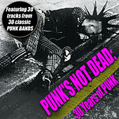 Play & Download Punk's Not Dead - 30 Years Of Punk by Various Artists | Napster