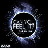 Can You Feel It, Vol. 2 (Compiled By Baramuda) by Various Artists