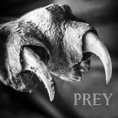 Play & Download Prey by Beast | Napster