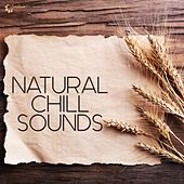 Play & Download Natural Chill Sounds by Various Artists | Napster