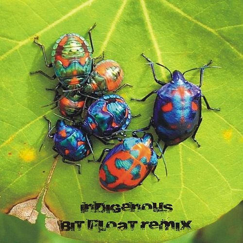 Play & Download Bring Back the After Hours (Bit Float Remix) by Indigenous | Napster