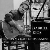 In My Days of Darkness (feat. Lieven Tavernier) by Gabriel Rios