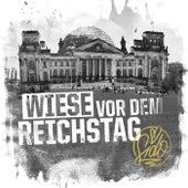 Wiese vor dem Reichstag by Sido