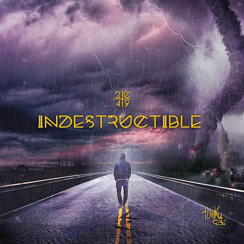 Indestructible by Funky