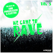 We Came to Rave, Vol. 3 by Various Artists