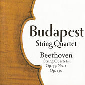 Play & Download Budapest String Quartet, Beethoven by Budapest String Quartet | Napster