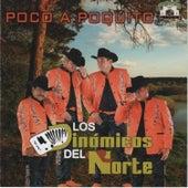 Play & Download Poco a Poquito by Los Dinamicos Del Norte | Napster