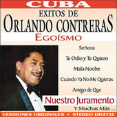 Play & Download Amor Ciego by Orlando Contreras | Napster