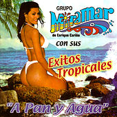 Play & Download Con Sus Éxitos Tropicales by Grupo Miramar | Napster
