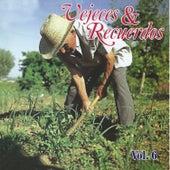 Vejeces & Recuerdos, Vol. 6 by Various Artists
